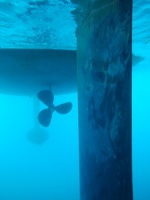 Rudder blade, propeller and keel.