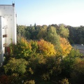 The green backyards of Berlin